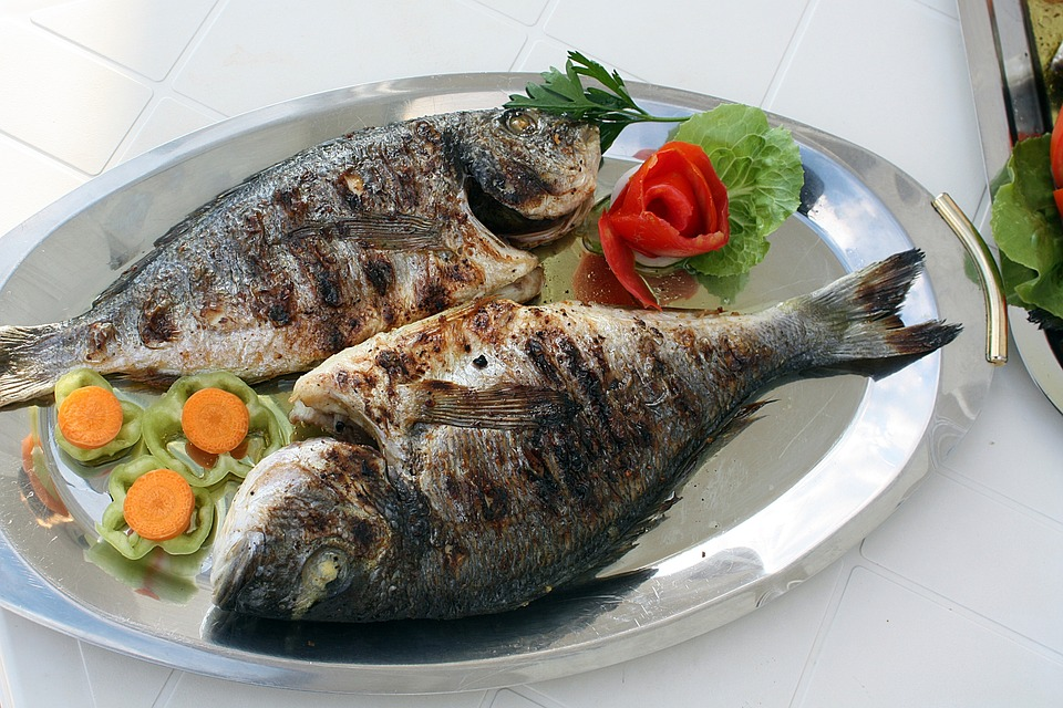 fish-2073798_960_720